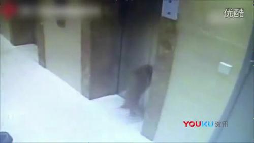 エレベーターに首吊り