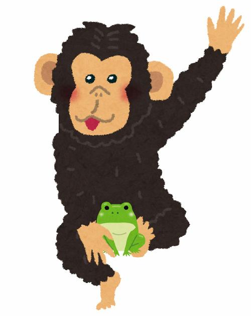 チンパンジーとカエル