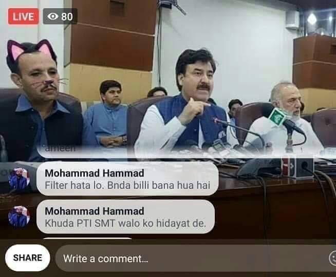 パキスタンの政治家が突如猫に